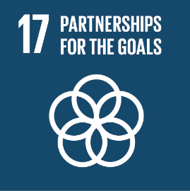 UN Sustainable Development Goal #17: Partnerships for the goals