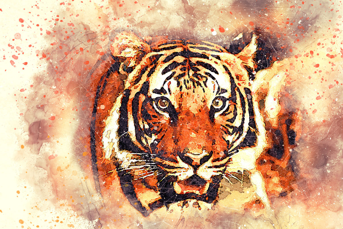 Leopard Animal Spirit Guide Art by JL G from Pixabay