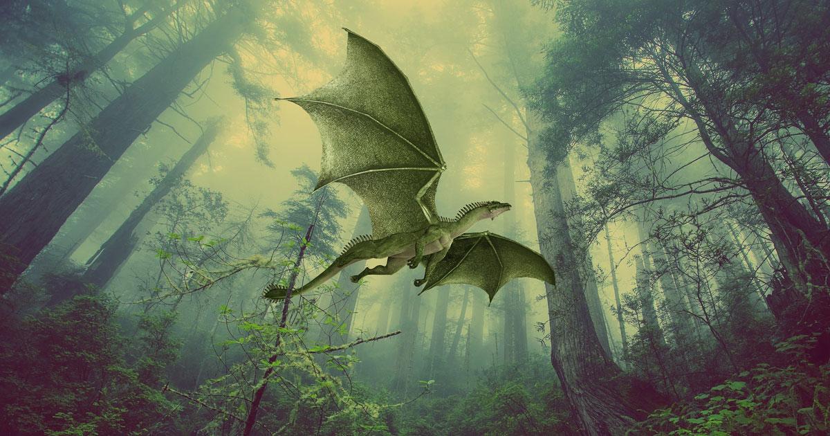 Dragon: Your Animal Spirit Guide