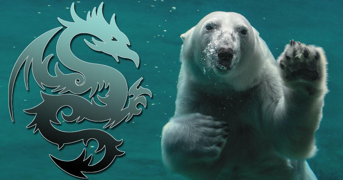 Polar Bear and Dragon: Your Animal Spirit Guides
